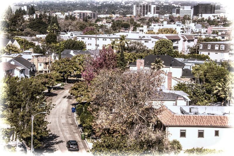 November 8 - West Los Angeles.jpg