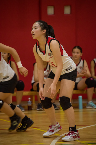 MS Girls Volleyball-October 2019-YIS_6066-2018-19.jpg