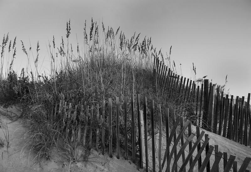 Outer Banks Sand Dunes Monochrome.jpg