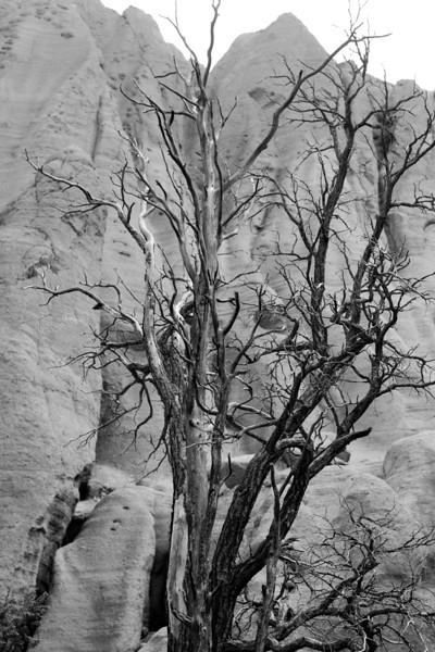 Arizona2014-108.jpg