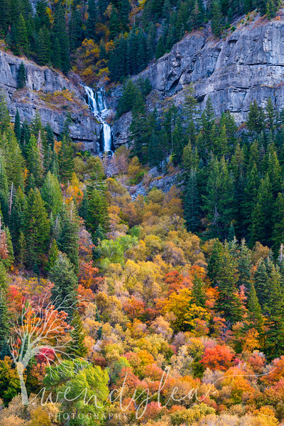 wlc alpine loop 101119 582019.jpg