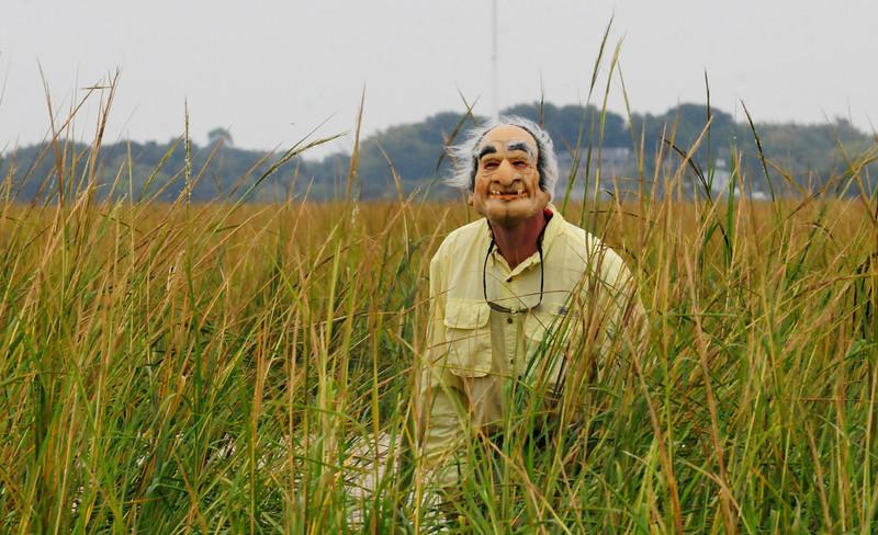 Old Man Grass_1.jpg