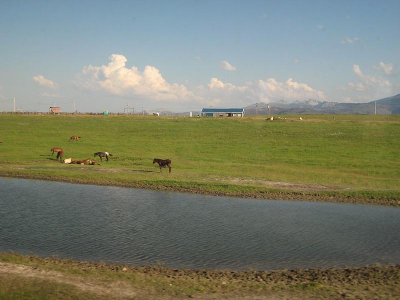 2008-07-24-YOCAMA-Montana_1766.jpg