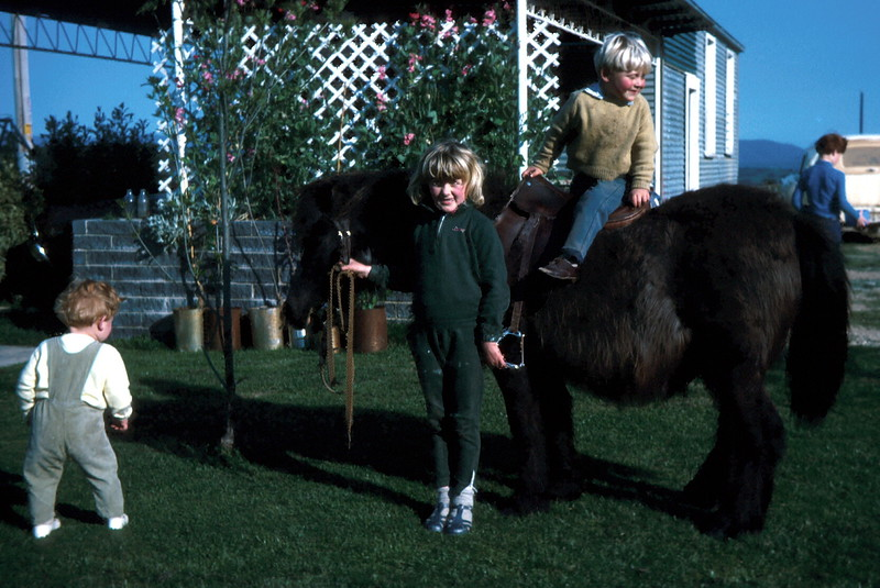 1972-9 (7) Allen 16 mths, Susan 7 yrs 2 mths, Andrew 3 yrs 1 mth on horse with David 8 yrs 9 mths in background.jpg
