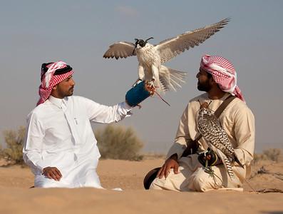 International Festival of Falconry