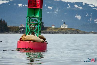 Alaska & Vancouver 2013