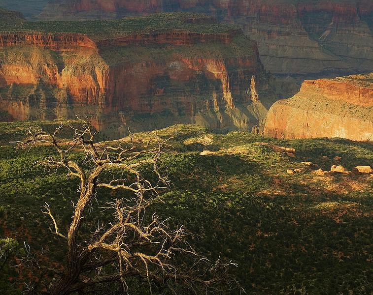 Grand Canyon North Rim - KW - Crazy Jug - KCOT.jpg
