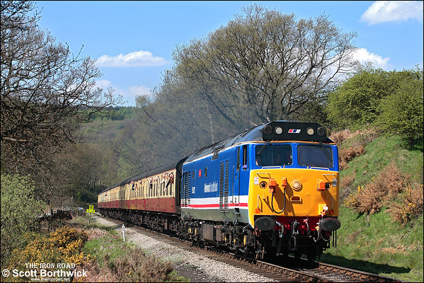 Class 50: All Images