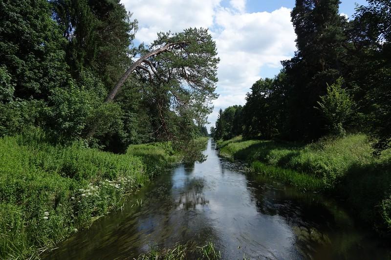 kanał Lasy Skaliskie.jpg