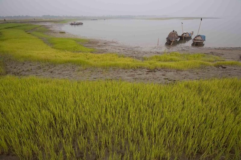 BD-SJN-2010-12-0753.jpg
