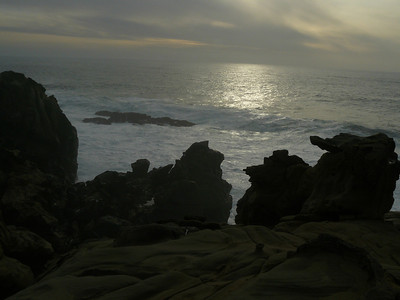 Coast N California