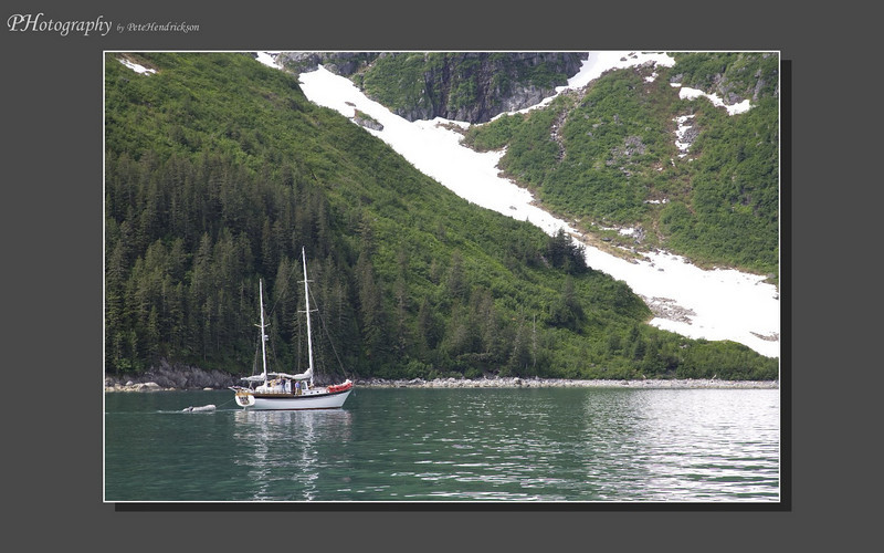 My Alaska 12-08-109.jpg
