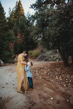 Blake Maternity :: Apple Hill