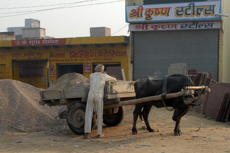 ox cart .jpg