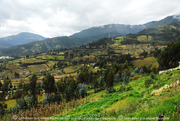 CAYAMBE HIGHLANDS, ECUADOR