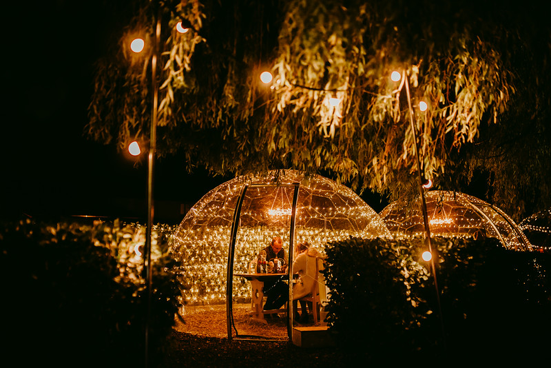 Willow Tree Domes