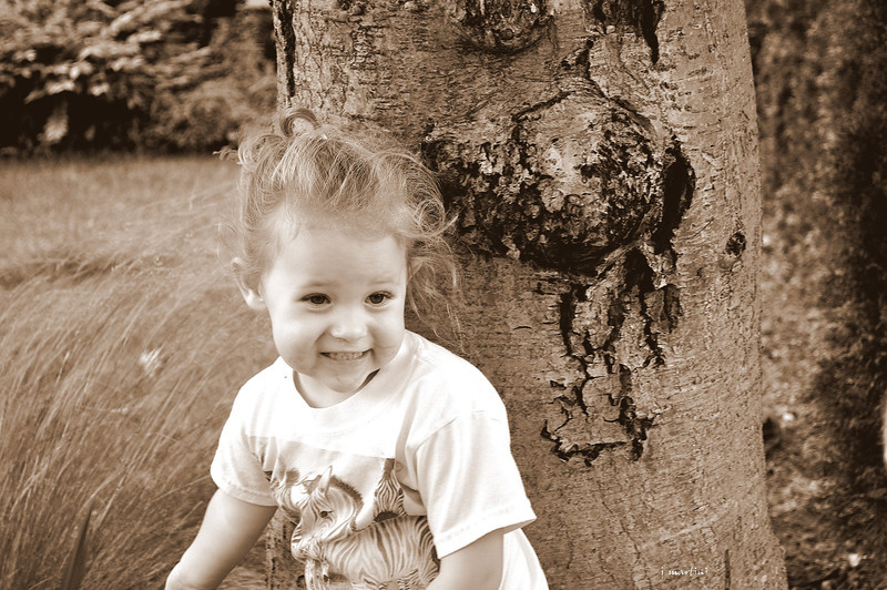 zebra shirt 7-9-2012.psd.jpg