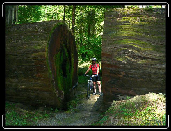 """Don't worry, we were just walking our bikes on this """"no bike"""" trail."""