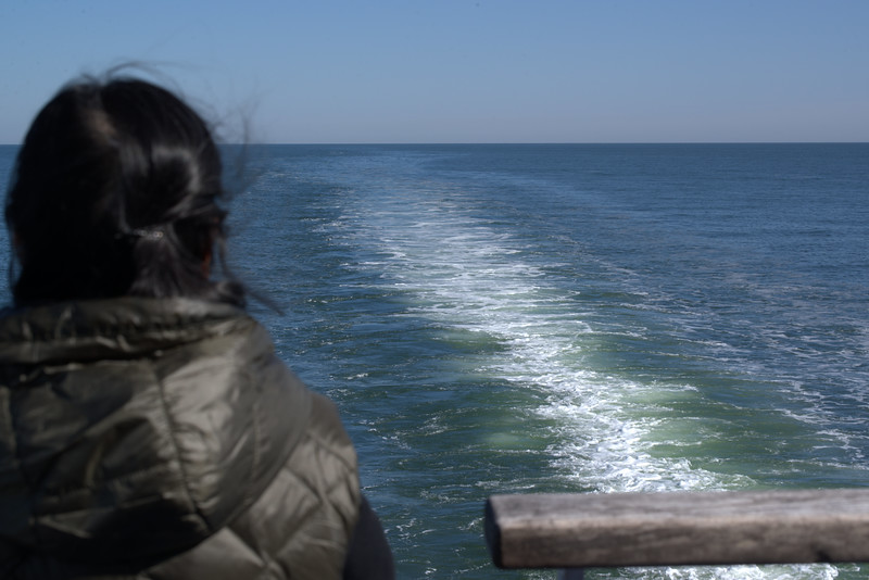 Cape May ferry 3.jpg