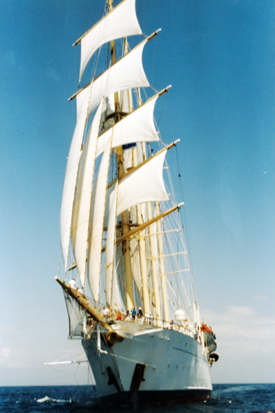 SF  at Sail 2-.png