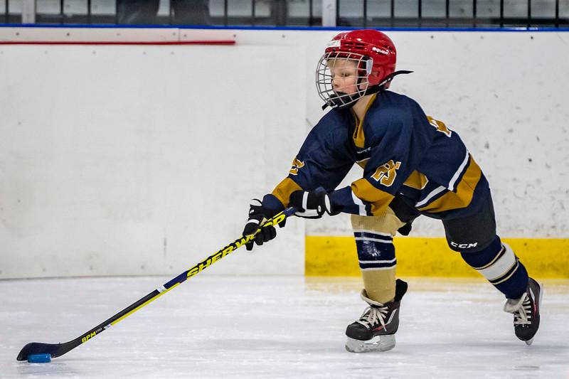 2019-02-03-Ryan-Naughton-Hockey-32.jpg