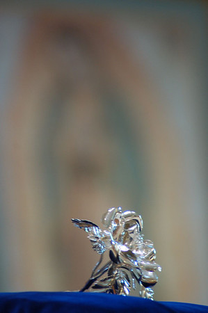 Silver Rose of Our Lady of Guadalupe 2011