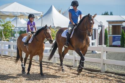 Horse Show Portfolio
