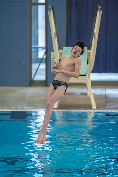 2018_KSMetz_Feb08_SHS Centenial League_Diving_NIKON D5_1917.jpg