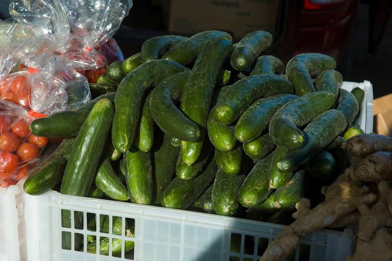 Zucchini Haleiwa's Farmers Market