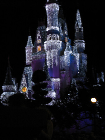 Day 4 - Evening at Magic Kingdom