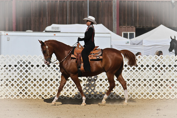 Horsemanship - Wed & Fri