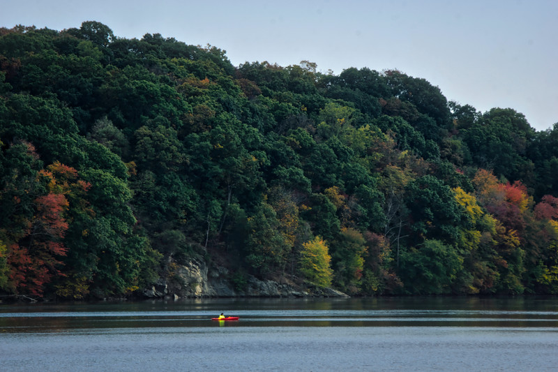 1063 - Autumn 2016 - Kayaker at Octoraro Lake (p).jpg