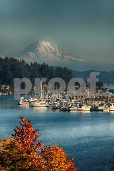Gig Harbor, Rainier 5272_HDR.jpg