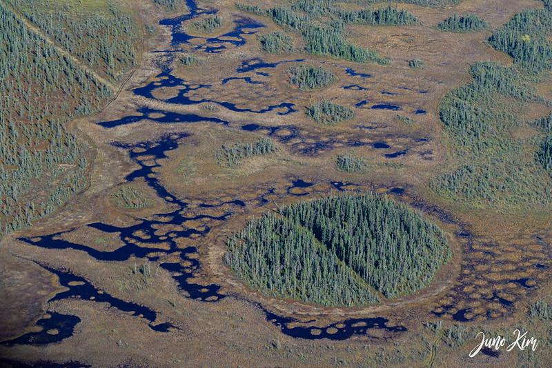 Rust's_Beluga Lake__6100984-2-Juno Kim.jpg