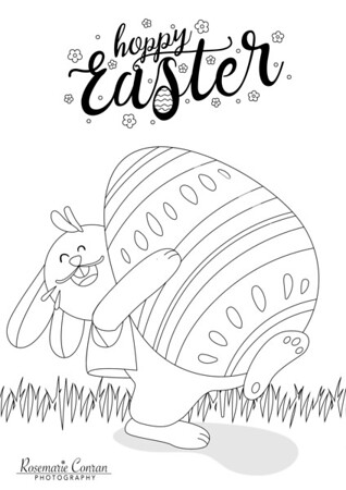 Easter colour and comps logo