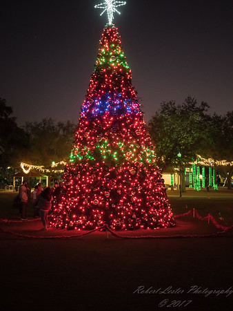 Daily Sightings  2017-12-10  Largo Central Park  Lights