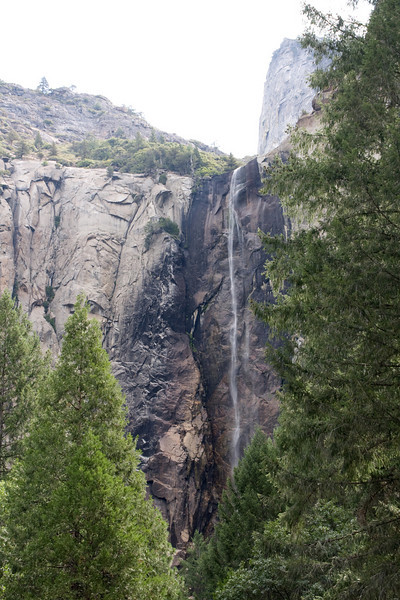 I just had to visit Bridalveil Fall to see the current water situation. Well--there is water--sort of--