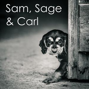 Sam, Sage & Carl