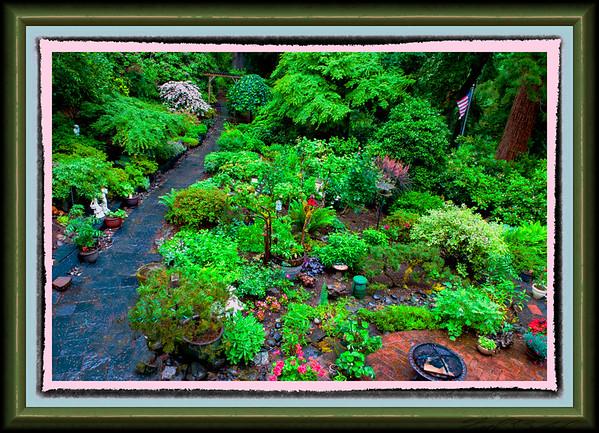 Dick and Ann's Garden