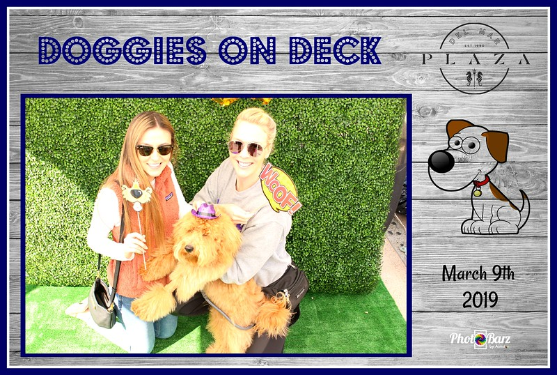 Doggys on Deck26.jpg