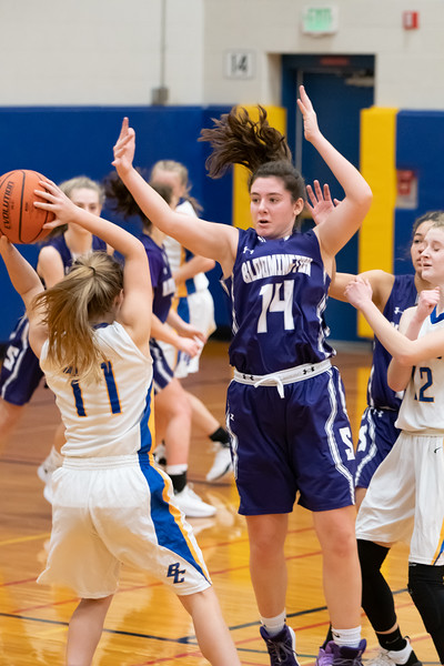 12-28-2018 Panthers v Brown County-1114.jpg