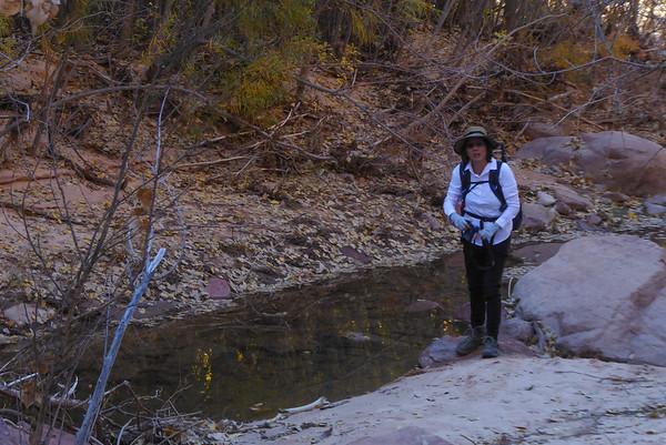 Pine Creek Waterfall Trail