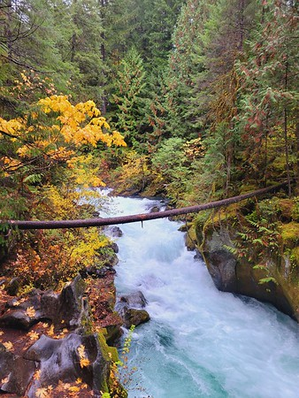 Oregon Adventure  21