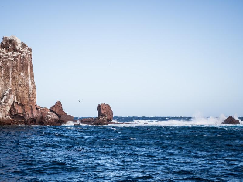 Sea of Cortez-120235.jpg