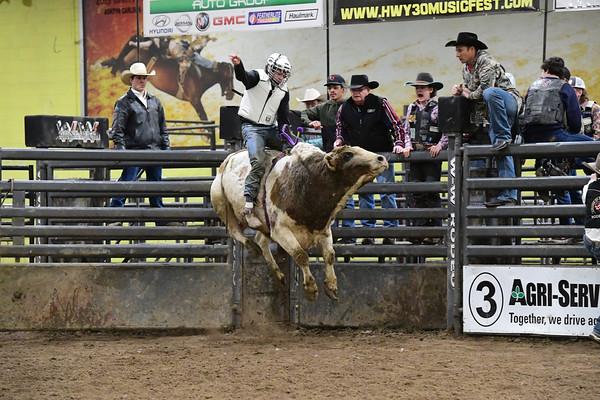 Bull Riding School/Bull Fighting School - Feb. 28