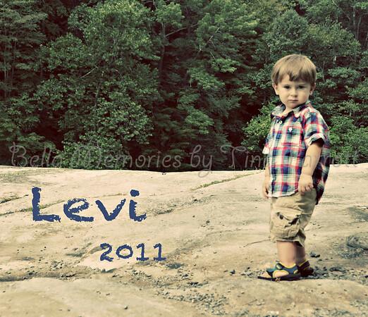 Levi 2011