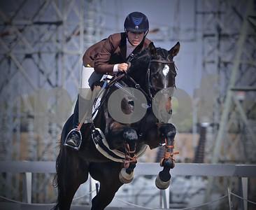 Fresno HT - Oct '16 - T Show Jumping