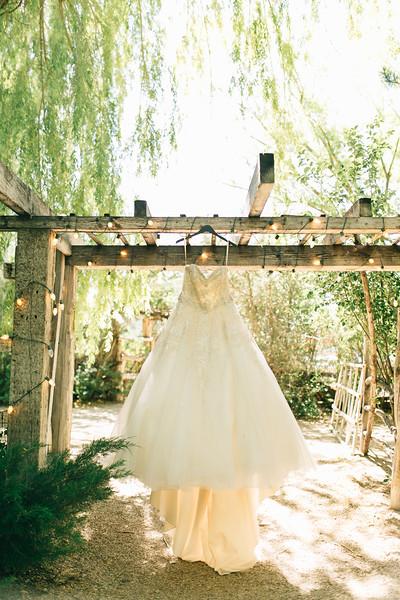 Robinson Wedding-7.jpg