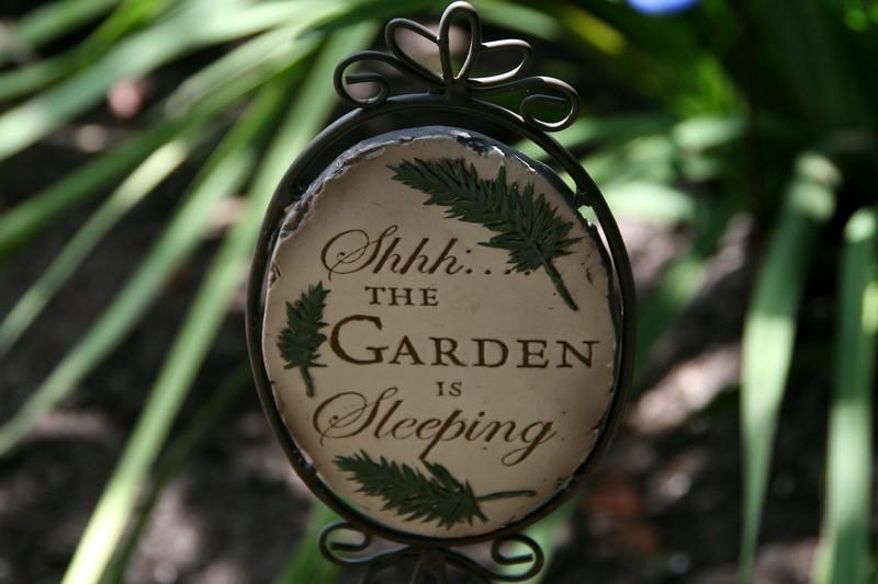 In My Little Garden