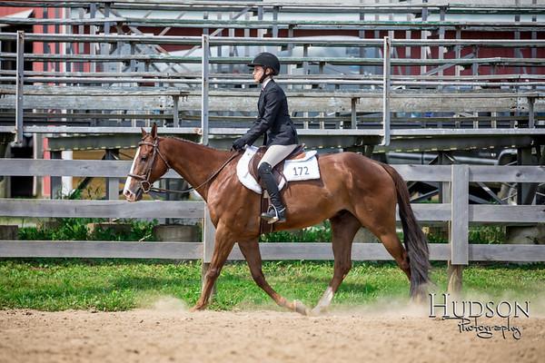 63 Breed Type HUS Horses Sr